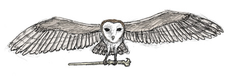 Owl and Wand