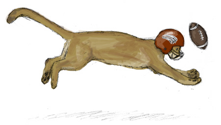 Football Cougar