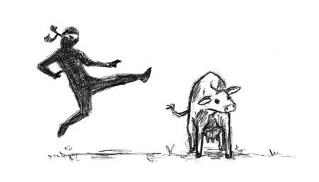 Ninja vs. Cow