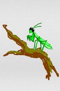 iPhone: Mantis