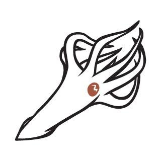 Albino Kraken Logo